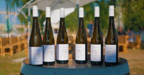 PH-Érték bormarketing-közösség